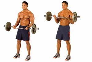 barbell curls oefening