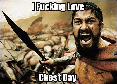 chest day 4-daagse splitschema